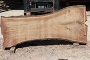 Tree trunk longitudinal slab russian origin 01